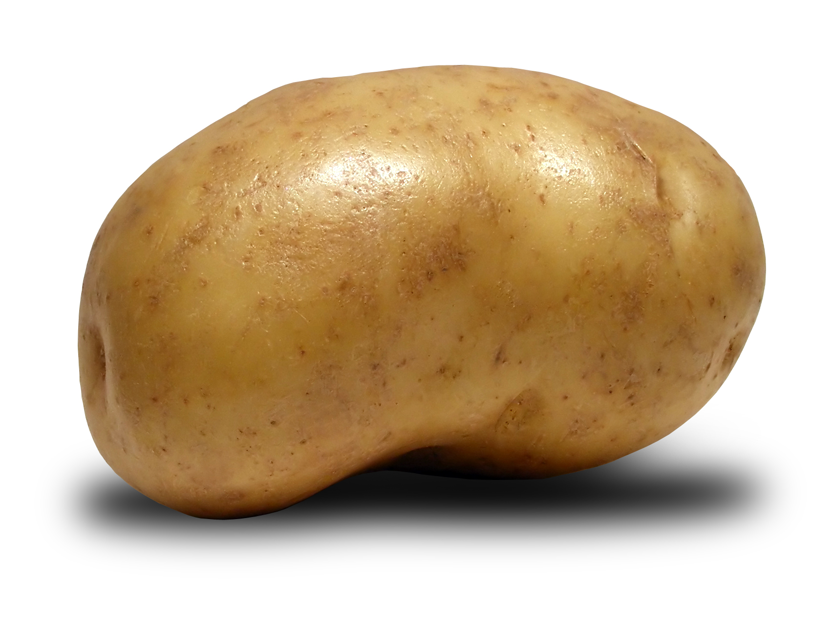 Ruminations on diversity and potatoes ritter 39 s ruminations ramblings - What to do with potatoes ...